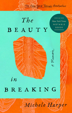 The Beauty in Breaking book cover