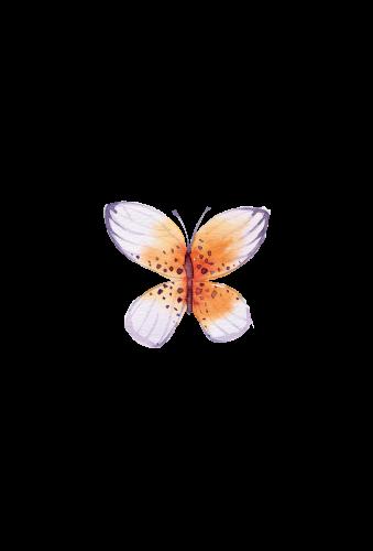swiejko-flowers_43_2